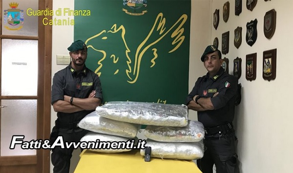 35-year-old Albanian arrested in Italy with 85 kg of marijuana