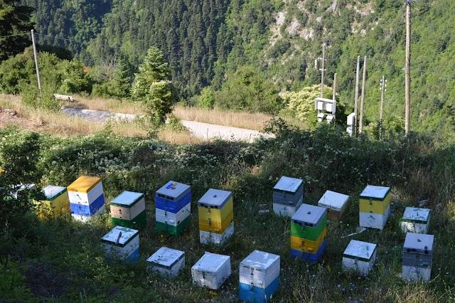 Τροφή μελισσιών στη διάρκεια του Χειμώνα