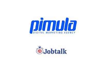 Pimula Agency Summer Internship