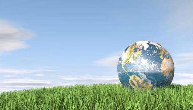 Global Bilgiler