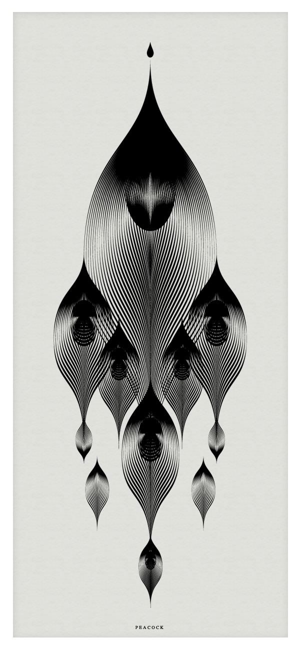 15-Peacock-Andrea-Minini-Minimalist-and-Highly-Stylized-Drawings-www-designstack-co