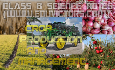 CBSE CLASS 8 - Science - Crop Production and Management (50+ Very Short Question and Answers) (#eduvictors)(#cbsenotes)