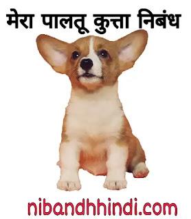 Essay on my pet dog in hindi | मेरा पालतू कुत्ता पर निबंध