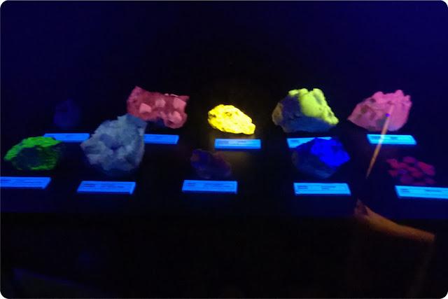 minerali e bambini scuola