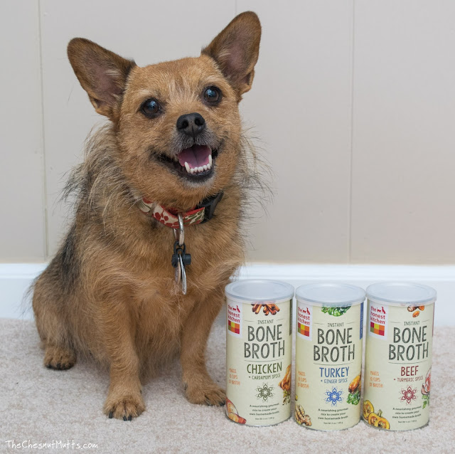 Mini Review: The Honest Kitchen Bone Broth for Dogs