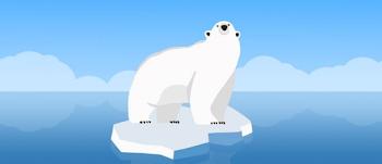 save the polar bear quiz answers 100% score