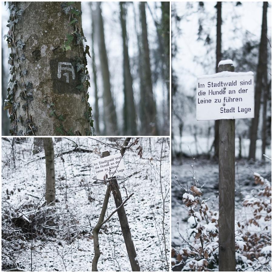 Blog + Fotografie by it's me! - Draussen - Magische Mottos im Januar, Im Stadtwald sind Hunde an der Leine zu führen & Zeichen am Baumstamm