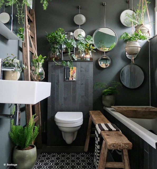 Beautiful Bathroom indoor plants