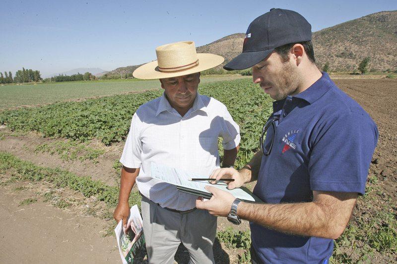 Buscan 1.800 encuestadores para censo agrícola