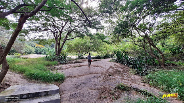 Walking through the beautiful park of Namada Chilume