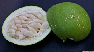 maypop fruit images wallpaper