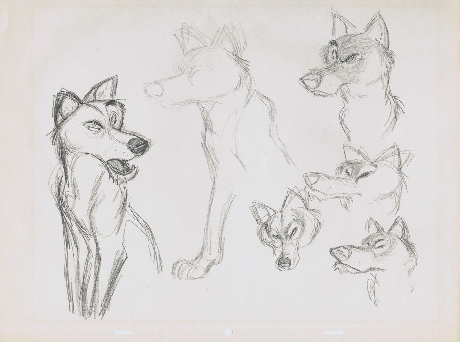 Deja View: Jungle Wolves