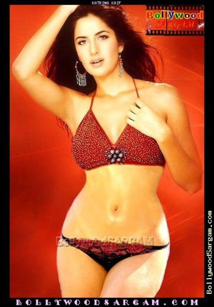 Katrina Kaif Hot  Sexy Bikini Images  Hot Celebrity -4343