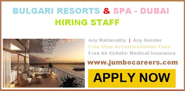 latest marriott hotel jobs in dubai