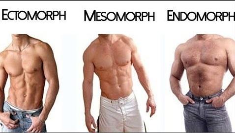 mezomorf vücut tipi erkek