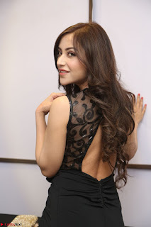 Angela Krislinzki in Transparent Black Gown at Rogue Movie Teaser Launch 1st March 2017 056.JPG