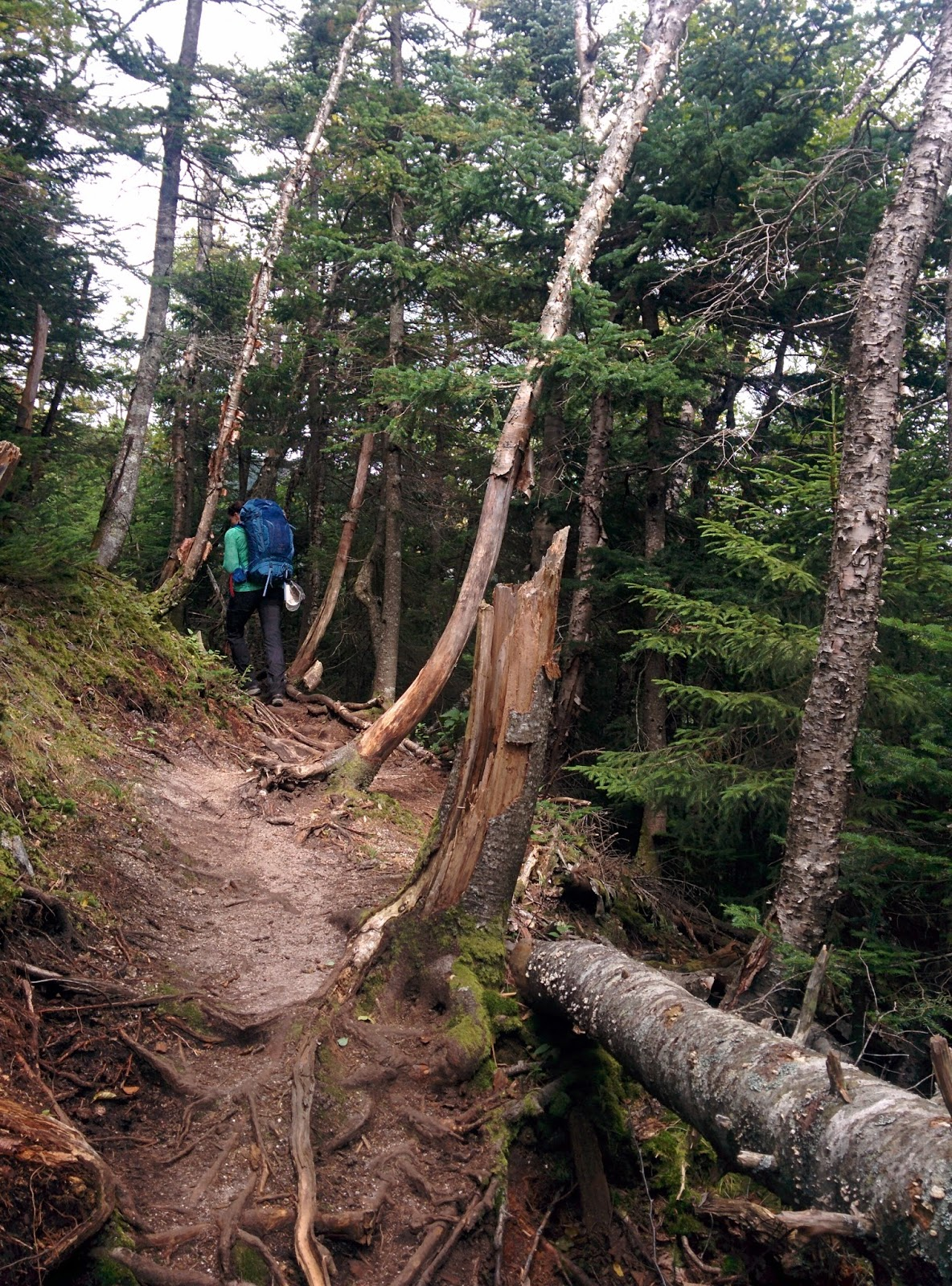 Adventure-Inspired®: Trip Report: Backpacking New ...