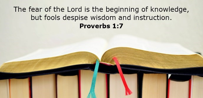 The fear of the Lord is the beginning of knowledge, but fools despise wisdom and instruction.