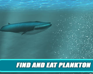 North Whale Survival Simulator