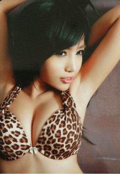 wildcat, Elly Tran Ha