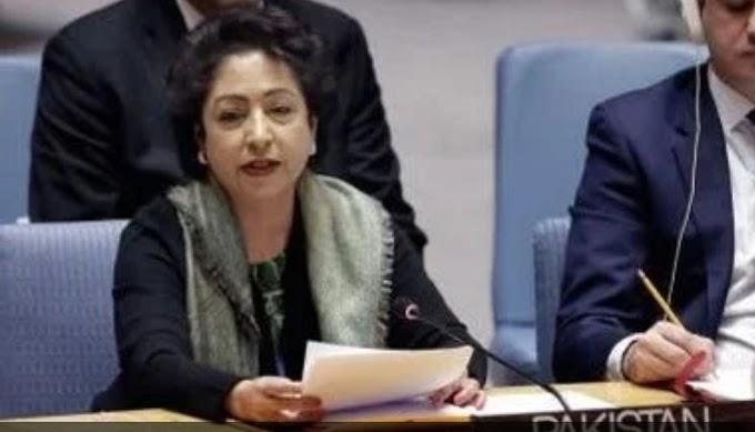 UN में मिशन कश्मीर फेल, डेढ़ फुट का रेड कॉर्पेट वेलकम,क्या इसलिए गई मलीहा लोधी की कुर्सी?