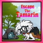 GamesZone15 Escape The Tamarin