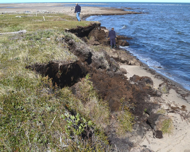 GIS — a powerful tool to be used with caution when assessing shoreline erosion