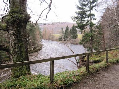 Deeside walks: a scenic view from the walk near Ballater