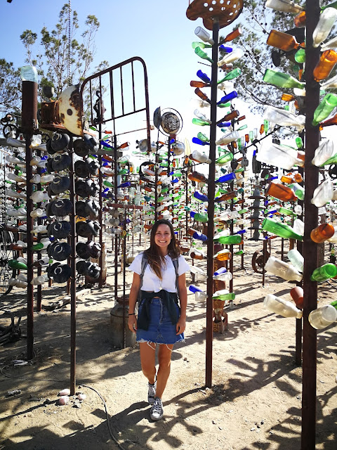 elmers bottle tree ranch california