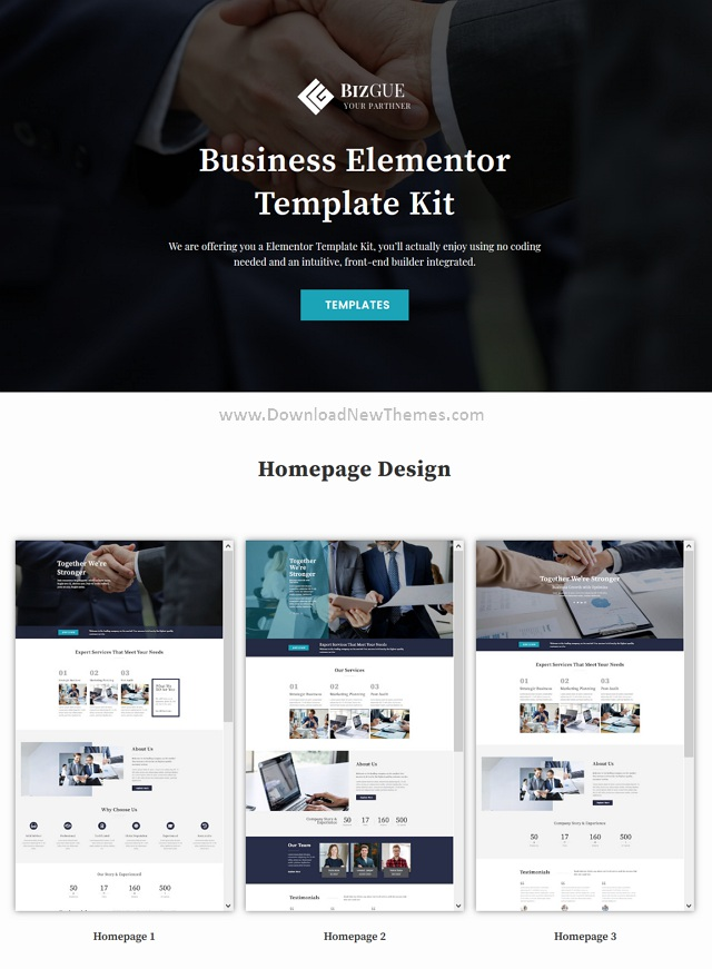 Business Elementor Template