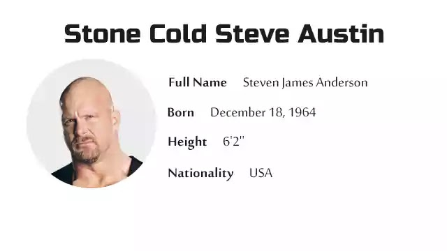 Stone Cold Steve Austin Biography History Net Worth And More