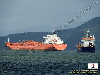 CTG Bismuth e Volvox Atalanta