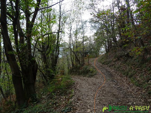 Cruce a Campiello y Rioseco