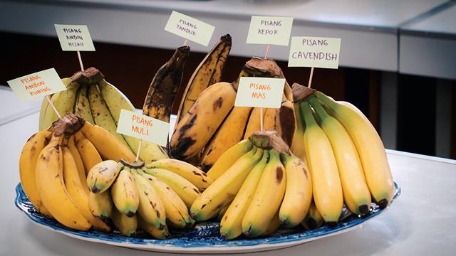 manfaat-pisang-ambon