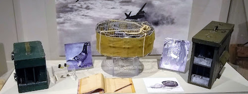 Selection of artifacts related to pigeons used to carry messages (cages, message capsules)