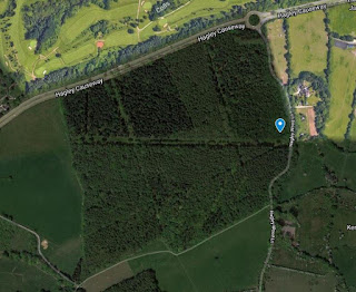Approximate location of handbag discovery in Hagley Wood