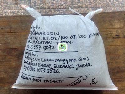 Benih padi yang dibeli   AJI QOMARUDIN Magetan, Jatim.  (Setelah packing karung ).