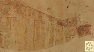 Parcelación agrícola existente a mediados del siglo XIX