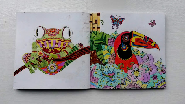 Frog and bird colouring book pages coloured