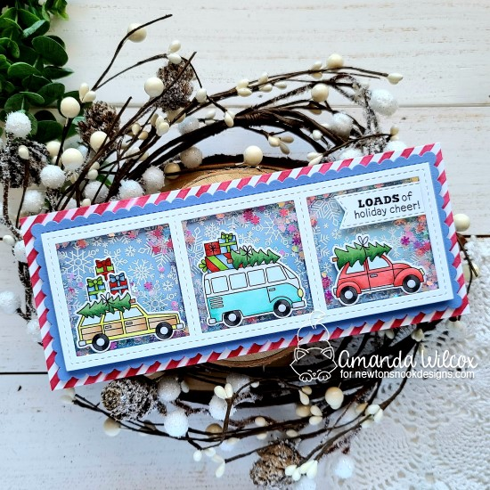 Slimline Christmas Shaker Card by Amanda Wilcox | Destination Christmas Stamp Set and Slimline Die Sets by Newton's Nook Designs #newtonsnook