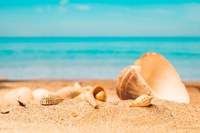Nivea et Nivea Sun - Nivea 2015 et 2019 : la crème des vacances.