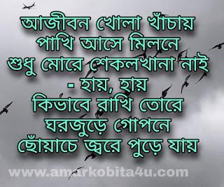 Pagol Pakhi Lyrics