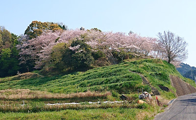 奉建塔(南河内郡千早赤阪村)