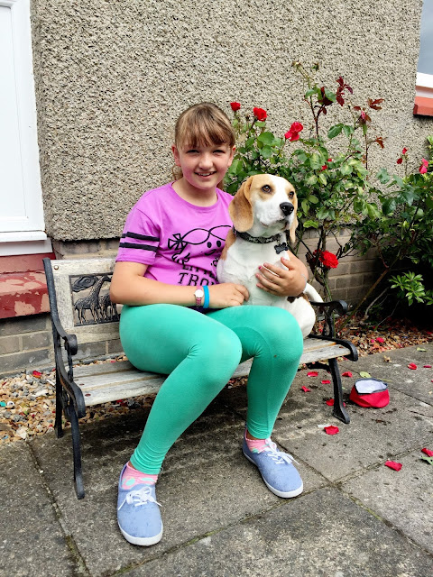 holly bobbins the beagle and Looby on a bench in a garden