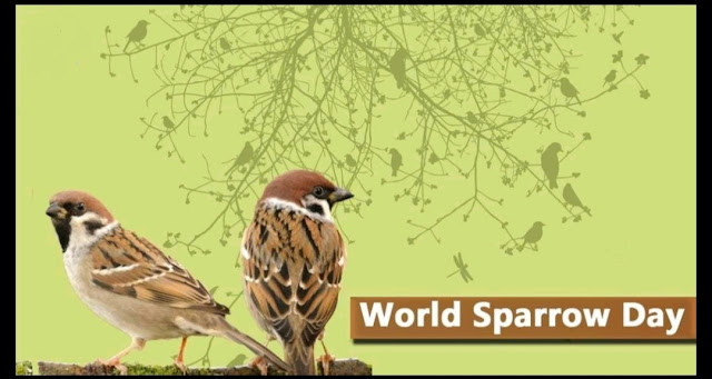 World Sparrow Day Quotes Images,  World Sparrow Day Status Images,  World Sparrow Day Quotes Photos,  World Sparrow Day Status Photos