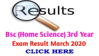 Bsc (Home Science) 3rd year Exam March 2020 (HS3P)|Jiwaji University  Bcom 3rd year result
