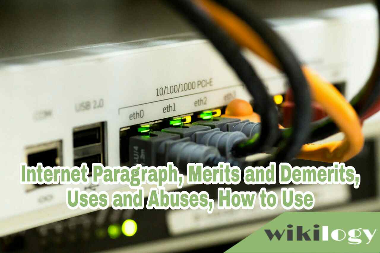 Internet Paragraph, How to use internet paragraph, Uses and Abuses & Merits and Demerits of internet