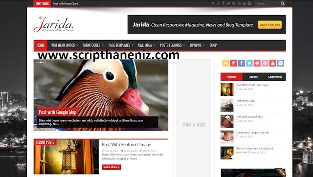 Wordpress Haber ve Blog Teması İndir