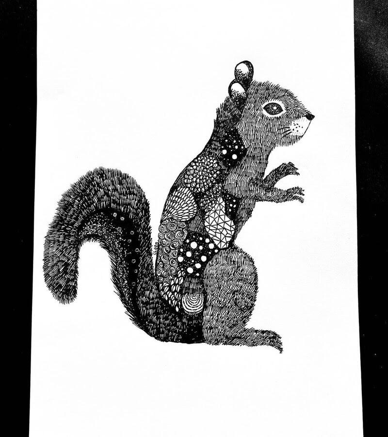 08-Red-squirrel-Sheen-www-designstack-co