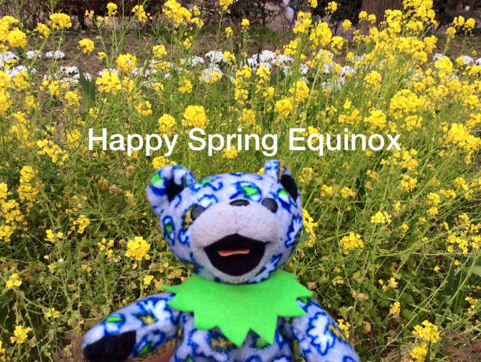 Spring Equinox Wishes For Facebook